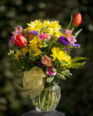 tulips in vase: Beautiful summer bouquet of flowers with yellow bow.