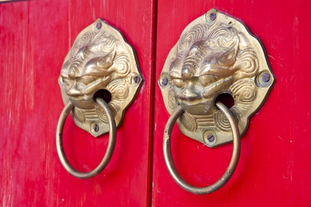 Lion head handles. photo
