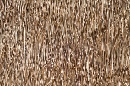 The background is made from dried grass. photo
