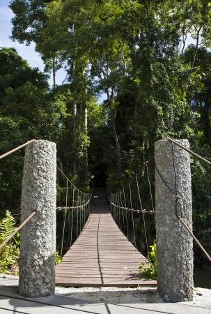 Suspension bridge for crossing streams, at Khao Yai national park Thailand. photo