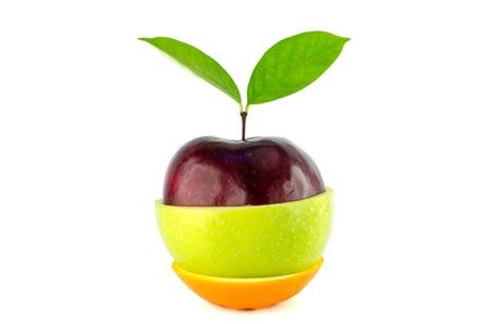 Fruta misturada