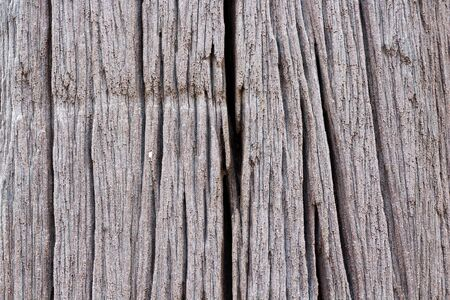 wood textures: wood cracked background textures.