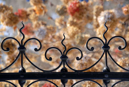 Iron gate top with flowers out of focus in background