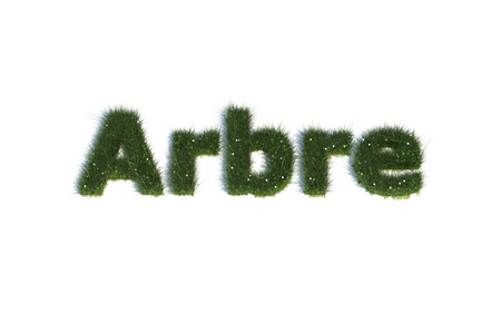 arbre: Arbre Stock Photo