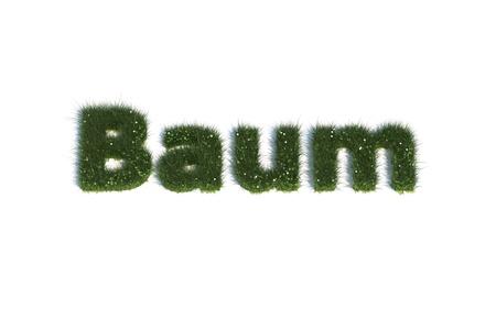 Baum photo