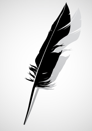 a feather: Black quill Illustration