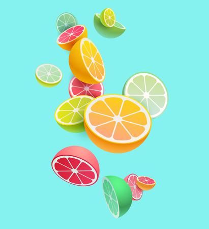 柑橘系の果物の組成物。ベクトルのスタイリング。