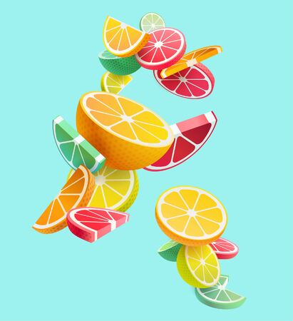 Citrus fruits composition. Vector styling. Stock Illustratie