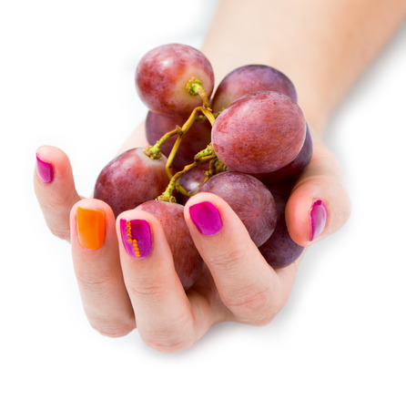 Young female hand with branch of red grape photo