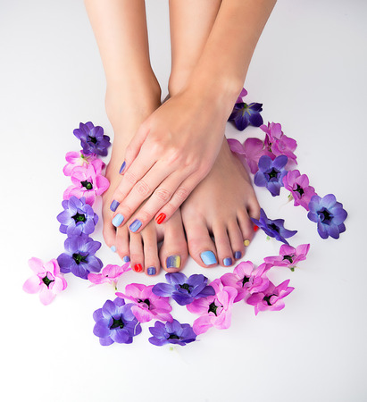 Manicured hand and pedicured feet with flowers arond on the white 스톡 콘텐츠