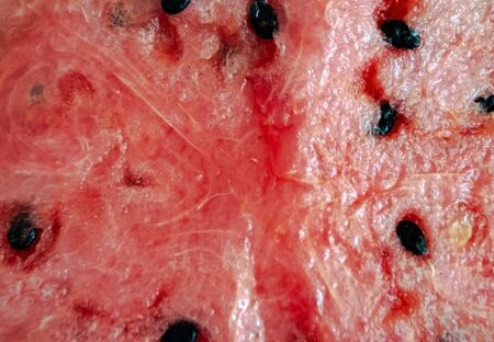 Ripe, juicy, red, sweet, flesh of watermelon close-up. Seedless watermelon background. Macro. Cut of red of berry, pulp texture. Citrullus lanatus, Cucurbitaceae. Kind of berry with a hard rind, pepo 스톡 콘텐츠