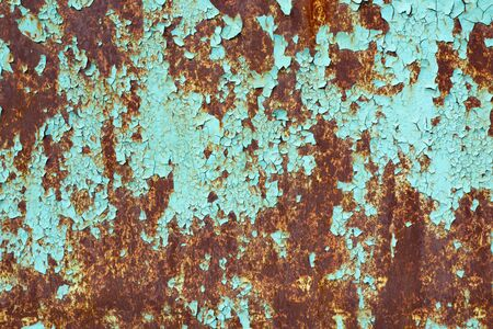 Rusty surface of metal plate with blue cracked color paint. Rust on old colored metal. Old blue fence. Grunge ruststained metal fence. Rust on blue iron-plate fencing. Seedy and shabby paling.