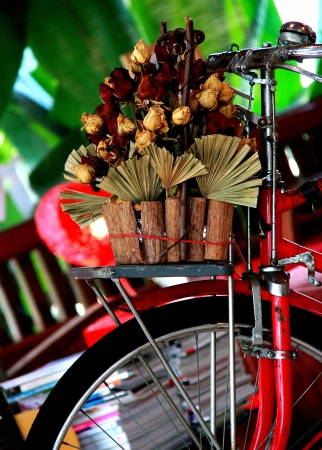Flower Bike in Coffee Cafe, Chiang Mai, Thailand photo