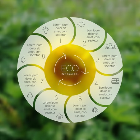 sunflowers: Crcle ecology infographic. Nature blur background.