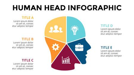 Infografía del cerebro del vector. Plantilla para el diagrama de cabeza humana, gráfico de conocimiento, presentación de red neural y gráfico de cara. Concepto de idea de negocio con 5 opciones, partes, pasos. Reunión creativa. Foto de archivo - 73377668