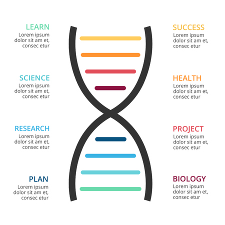 Vector DNA science infographic, medical diagram, healthcare graph, hospital presentation, chart. Concept with 8 options, parts, steps, processes. Illustration