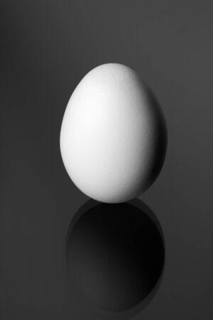 huevo blanco: Egg