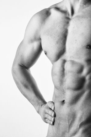 abdominals: Male torso abdominals Stock Photo