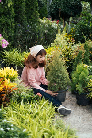 Brunette girl in beige headband and pink long sleeve t-shirt sitting on the floor among the tree pot and hold the pine in pot with love and care. Banco de Imagens