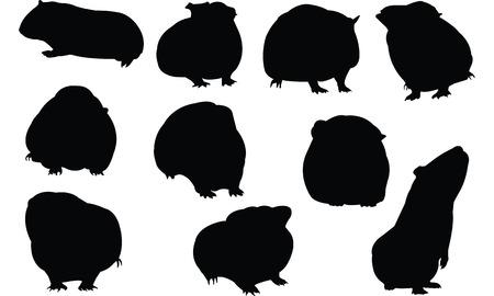 Guinea Pig Silhouette vector illustration Illustration