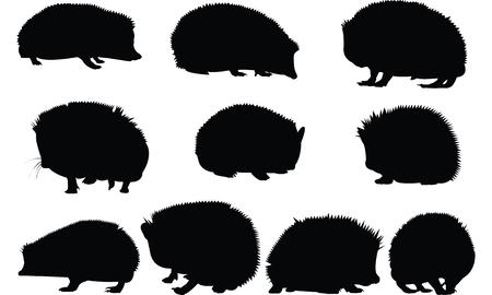 Illustration vectorielle de Hedgehog Silhouette Banque d'images - 81539060