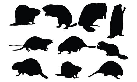 A beaver Silhouette vector illustration. Illustration