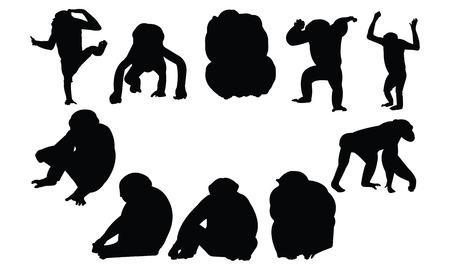 primate biology: Chimpanzee Silhouette vector illustration Illustration