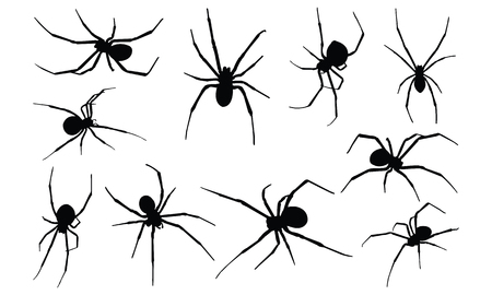 Black Widow Spider silhouet vectorillustratie Stock Illustratie