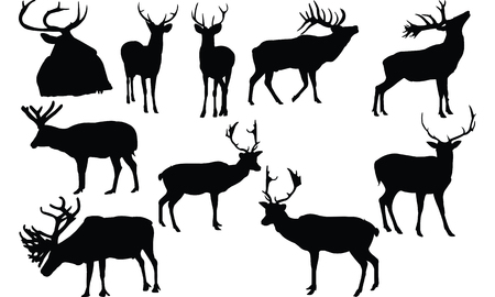 Elk silhouette illustration vectorielle Banque d'images - 81774488