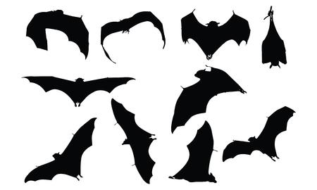 Bat Silhouette vector illustration