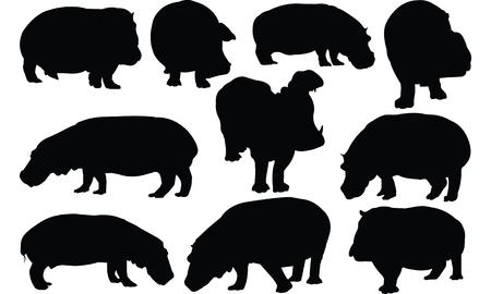 Hippopotamus Silhouette vector illustration Illustration