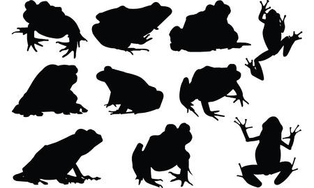 Frog Silhouette vector illustration