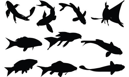 Koi Silhouette illustration vectorielle Banque d'images - 81539046