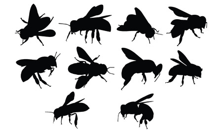 mason: Bee Silhouette vector illustration Illustration
