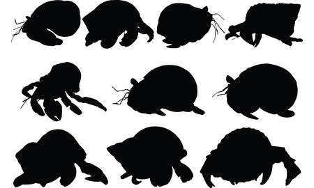 Hermit Crab Silhouette illustration vectorielle Banque d'images - 81552804