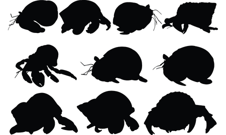 Hermit Crab  Silhouette vector illustration