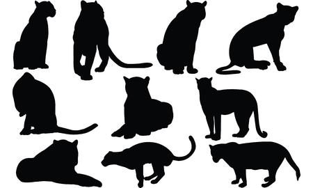 Jaguar Silhouette vector illustration  イラスト・ベクター素材