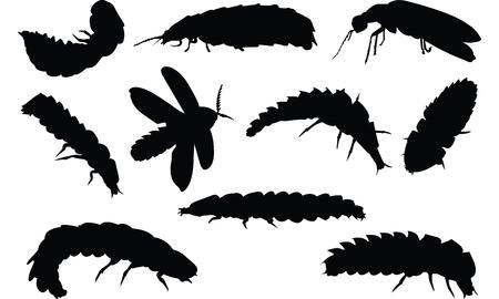 Firefly Silhouette vector illustration