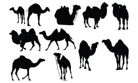 ラクダのシルエット ベクトル図