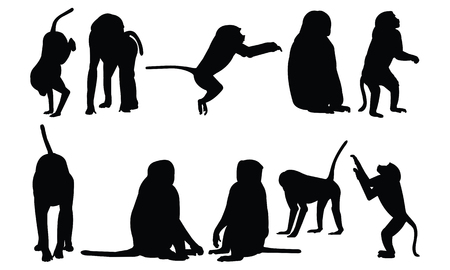 simple life: Baboon Silhouette vector illustration Illustration