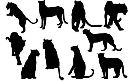 Luipaard silhouet vectorillustratie