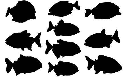 Piranha's silhouette vector illustration