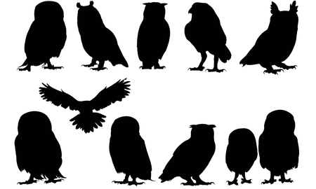 Owl  silhouette vector illustration 版權商用圖片 - 81693359