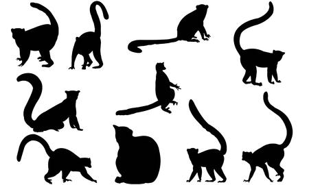 Lemur silhouette illustration vectorielle Banque d'images - 81781266