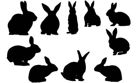 Illustrazione vettoriale silhouette di coniglio Archivio Fotografico - 81781268