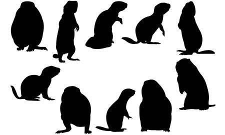 Prairie Dog  silhouette vector illustration Ilustração
