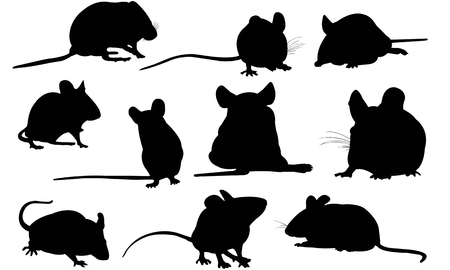 Mouse  silhouette vector illustration Stock Illustratie