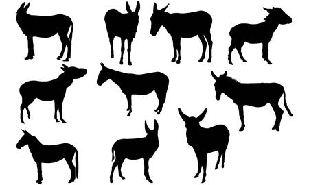 Mule  silhouette vector illustration