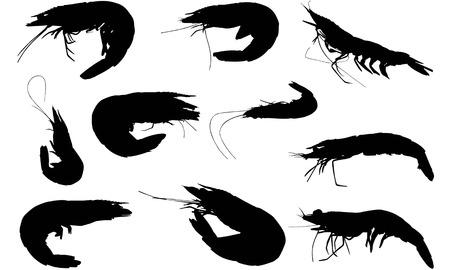Prawn   silhouette vector illustration.