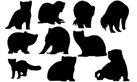 marten: Marten  silhouette vector illustration.